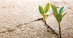Is concrete sustainable?